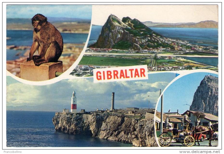 GIBRALTAR - VIEWS / THEMATIC STAMP-FISH / FISHING - Gibilterra