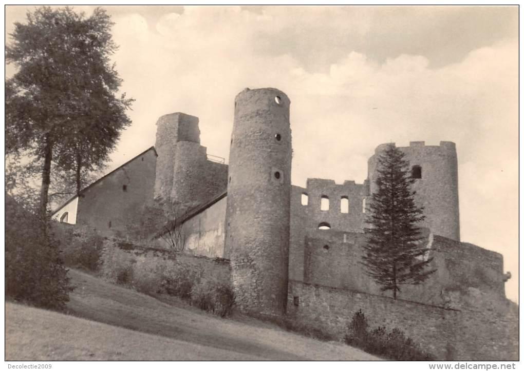 BG313 Burgruine  Frauenstein Erzgebirge   CPSM 14x9.5cm Germany - Frauenstein (Erzgeb.)
