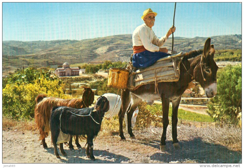 CYPRUS - VILLAGER BACK FROM THE FIELDS PAPHOS(LOT R3) - Chypre