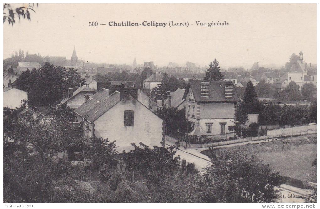CHATILLON COLIGNY    VUE GENERALE (DIL256) - Chatillon Coligny