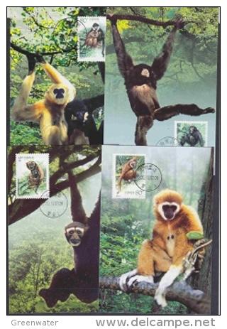 China P.R. 2002 Monkeys 4v 4 Maxicards (19370) - Maximum Cards