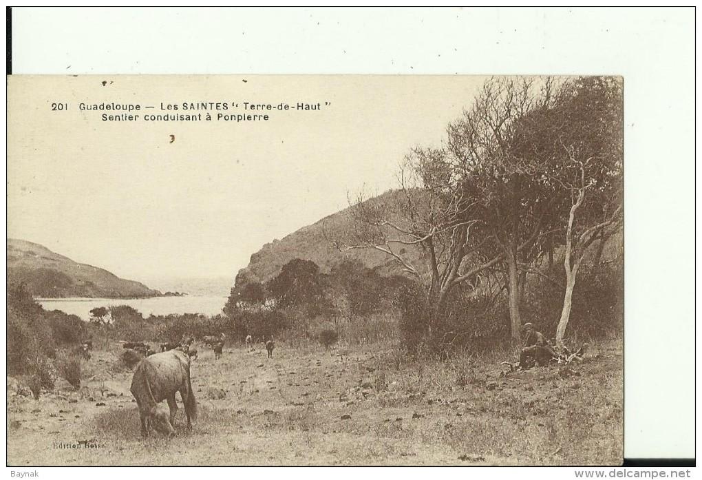 GV230  --   GUADELOUPE    --   LES SAINTES   ,,  TERRE DE HAUT ,,   ----   SENTIER CONDUISANT A PONPIERRE - Guadeloupe