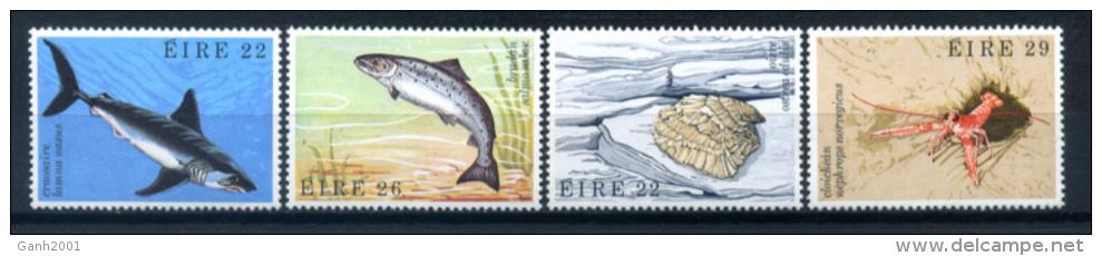 Ireland 1982 Irlanda / Fish & Marine Animals MNH Peces Animales Marinos Fisch / Iy28   1 - Peces