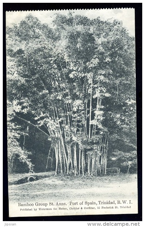 Cpa Antilles Trinidad B.W.I. Bamboo Group St Anns , Port Of Spain   JA15 27 - Trinidad