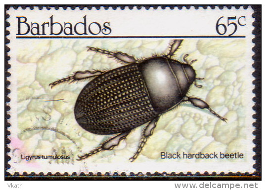 BARBADOS 1990 SG #938 65c VF Used Insects - Barbades (1966-...)