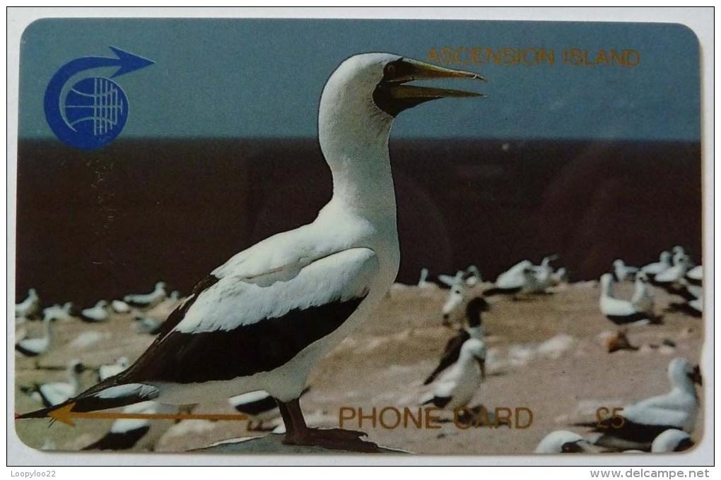 ASCENSION ISLANDS - GPT - £5 - 1CASB - MINT - Ascension (Insel)