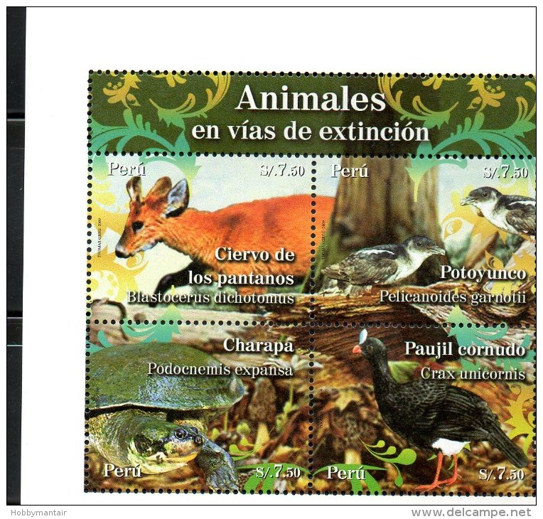 PERU, 2009, ANIMALS, BIRDS, TURTLE, S/S, MNH** - Timbres
