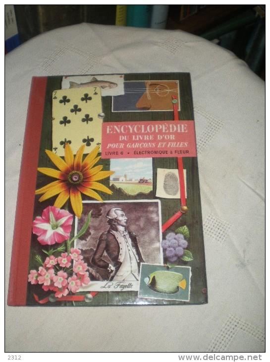 ENCYCLOPEDIE DU LIVRE D´OR POUR GARCONS ET FILLES - LIVRE 6 - ELECTRONIQUE A FLEUR - Livres Pour Enfants