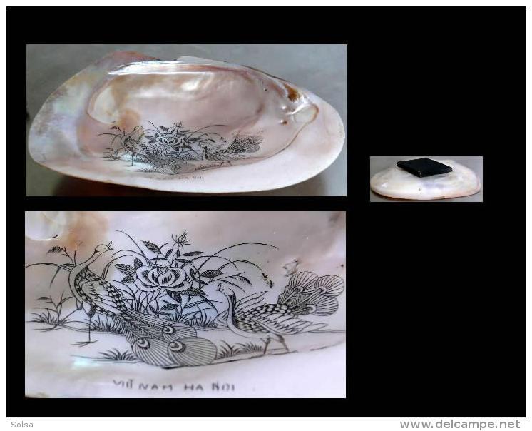 Souvenir De Hanoi - époque Coloniale - Coquillage / Old Viet Nam Hanoi Shell - Obj. 'Souvenir De'