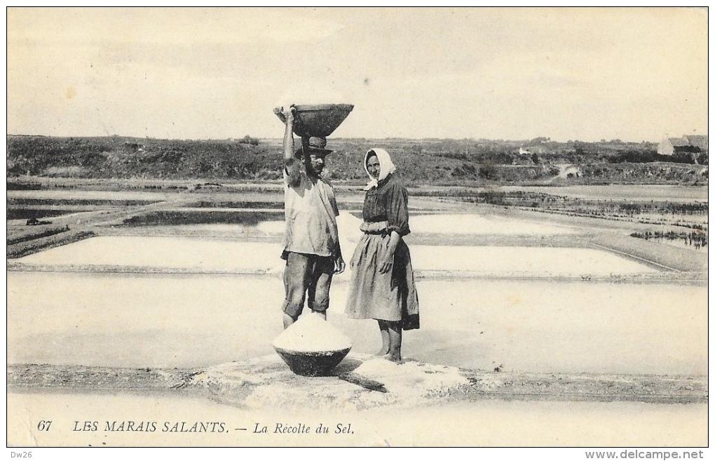 Paludiers - En Bretagne (Loire-Inférieure) - Les Marais Salants - La Récolte Du Sel - Other