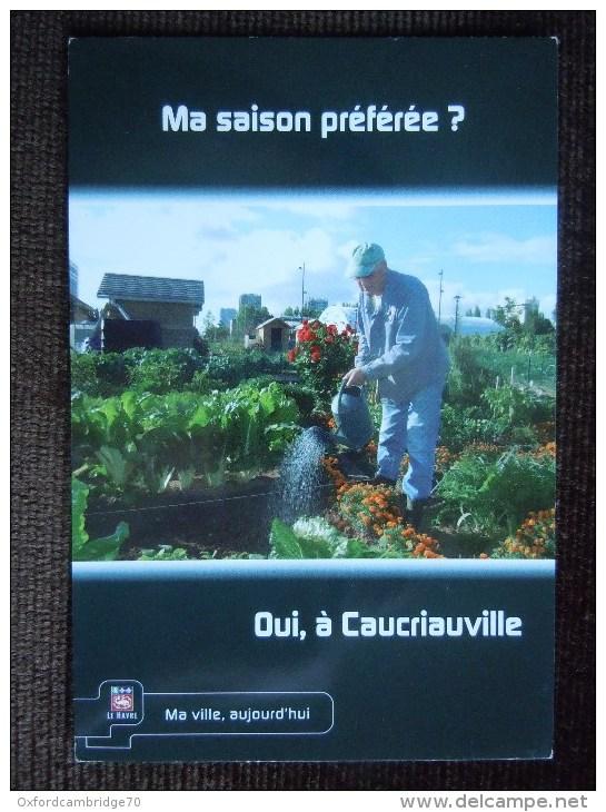 Le Havre , Jardins Ouvriers De Caucriauville - Le Havre
