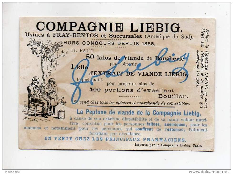 Chromo - Compagnie Liébig - Au Fond De La Mer - Actinie - Liebig