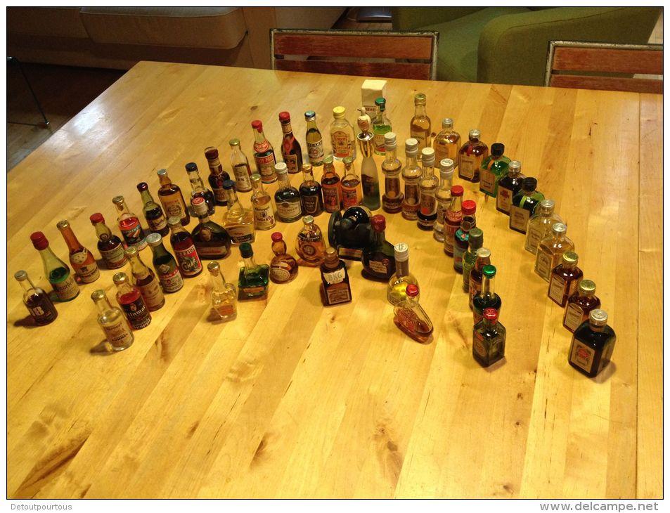 Lot De 60 Mini Bouteilles Mignonettes Cointreau Pernod Ricard Kirch Groppi Cognac Garnier Liqueurs Cherry Vodka +++ - Autres Bouteilles