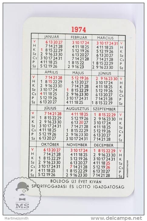Vintage 1974 Small/ Pocket Calendar - Bath Suit Sexy Lady - Hungarian Gaming - Calendarios