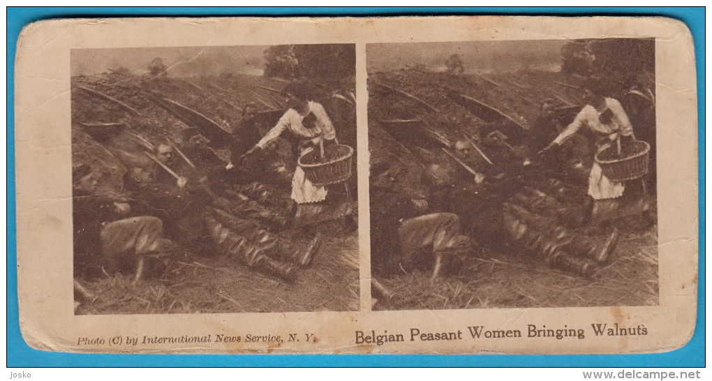 BELGIAN PEASANT WOMEN BRINGING WALNUTS  - Old Stereoscope Stereo Photo Card Carte Annciene Stéréoscopique BELGIUM BELGIE - 1914-18