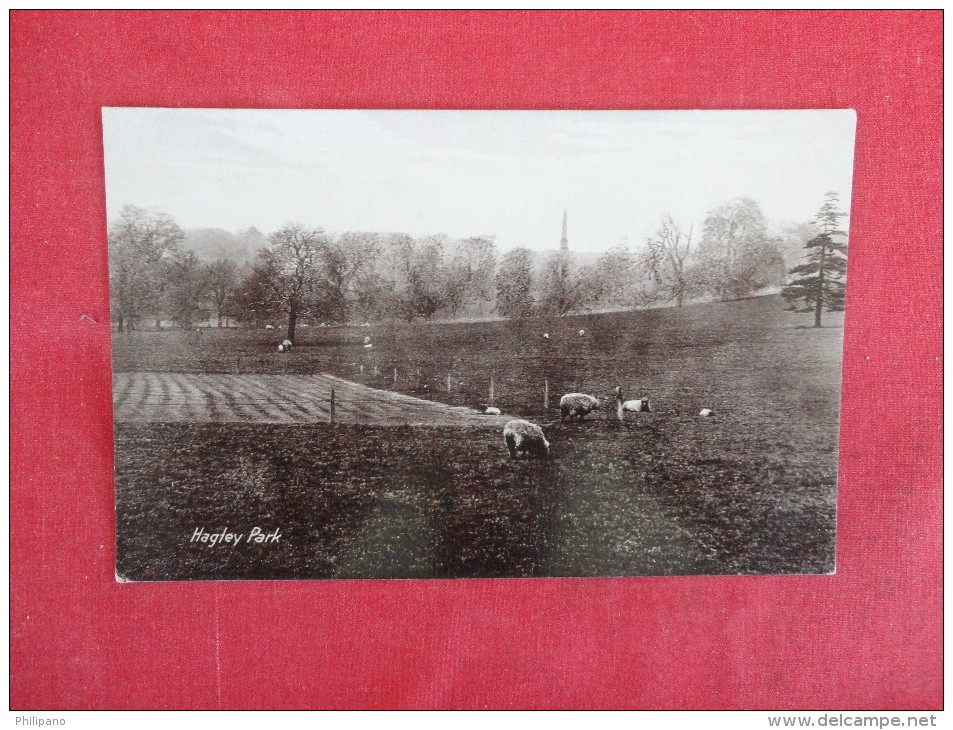 Hagley Park Cricket Square Stourbridge RP Sheep Halesowen -------ref 1763 - Worcestershire
