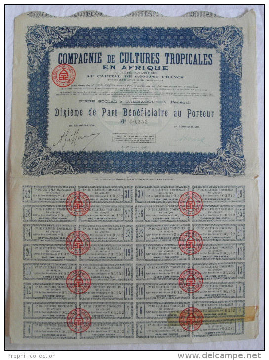Action 1928 Compagnie Cultures Tropicales En Afrique Tambacounda Senegal Dixieme Part De Beneficiaire Titre Coupons - Afrique