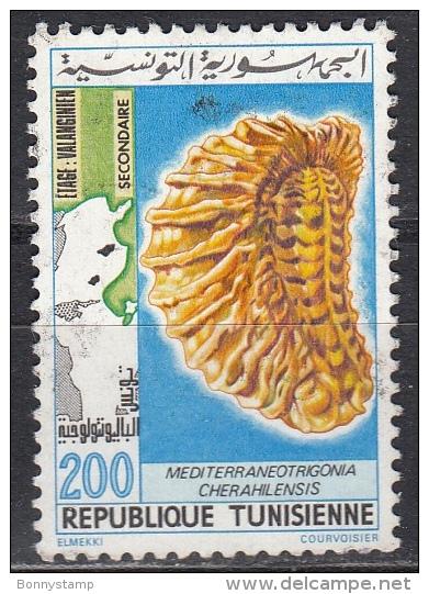 Tunisia, 1982 - 200m Tunisian Fossils - Nr.809B Usato° - Tunisia (1956-...)