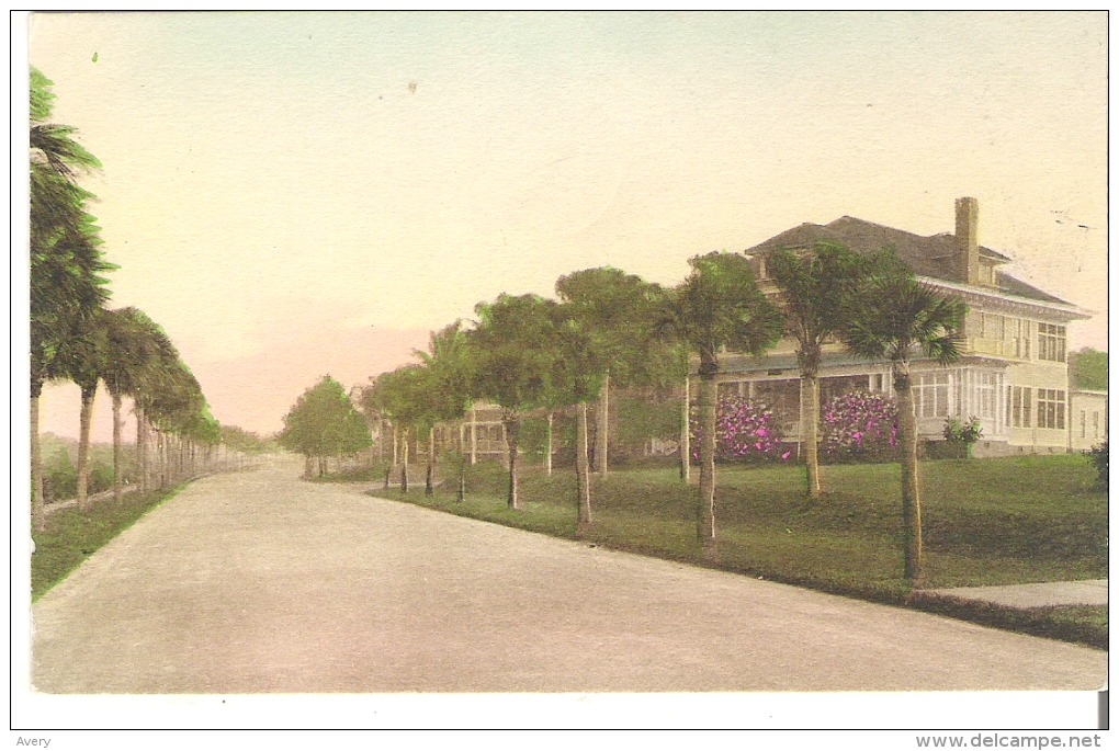 The Belleview Biltmore, Entrance Driveway, Belleair! Florida  Hand-Colored - United States