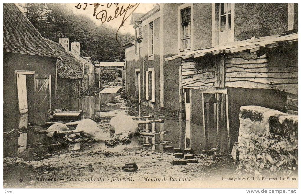 Mamers. Catastrophe Du 7 Juin 1904. Moulin De Barrutel. (Cheveaux Morts). - Mamers