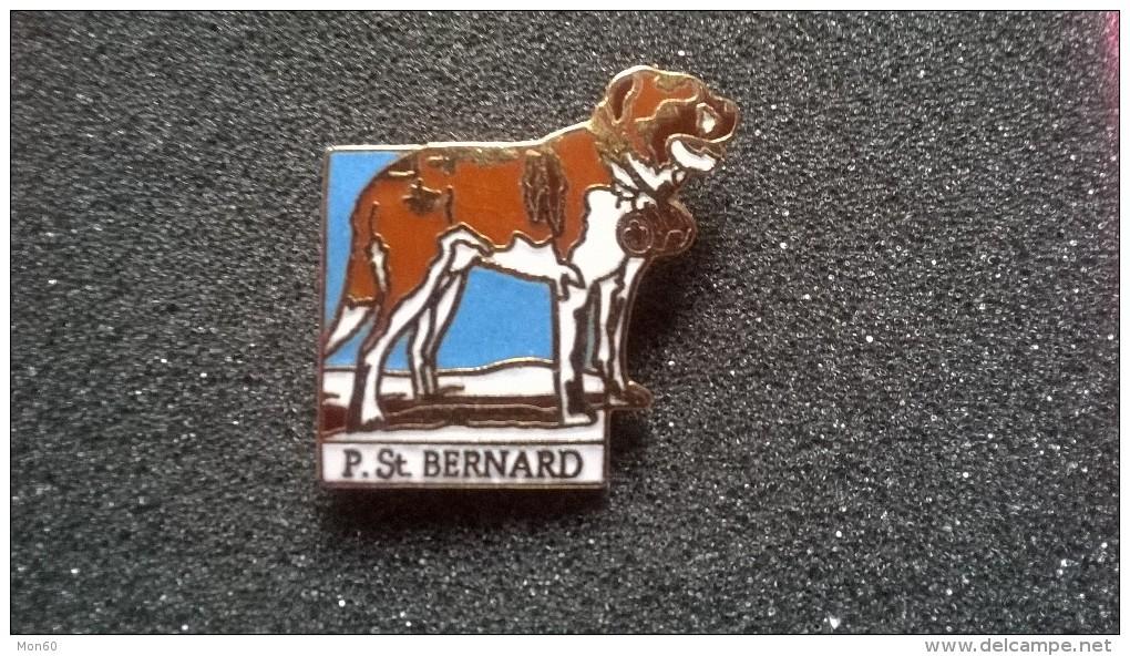 Pin P. St. Bernard -P60 - Non Classificati