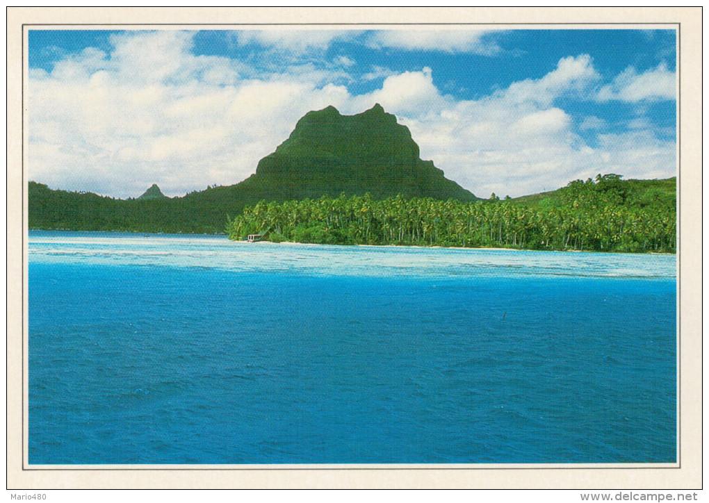 POLINESIA   BORA BORA:  VEDUTA DI UNA SPIAGGIA        (NUOVA CON DESCRIZIONE DEL SITO SUL RETRO) - Polinesia Francese