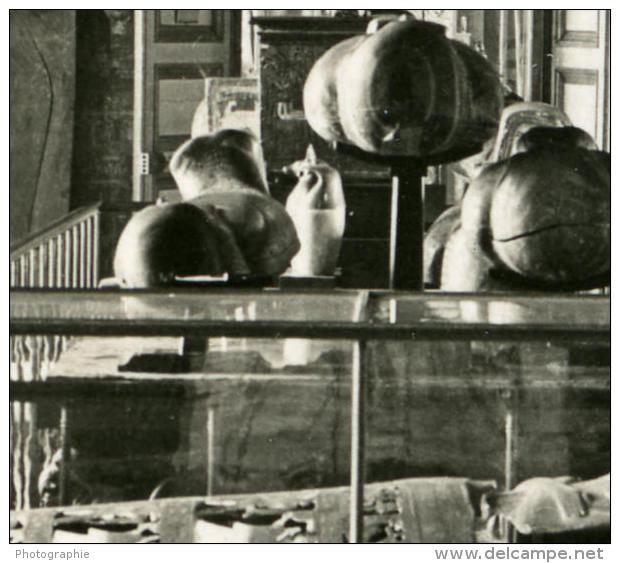 France Paris Musée Du Louvre Salle Des Divinités Egyptienne Ancienne NPG Stereo Photo 1900 - Stereoscopic