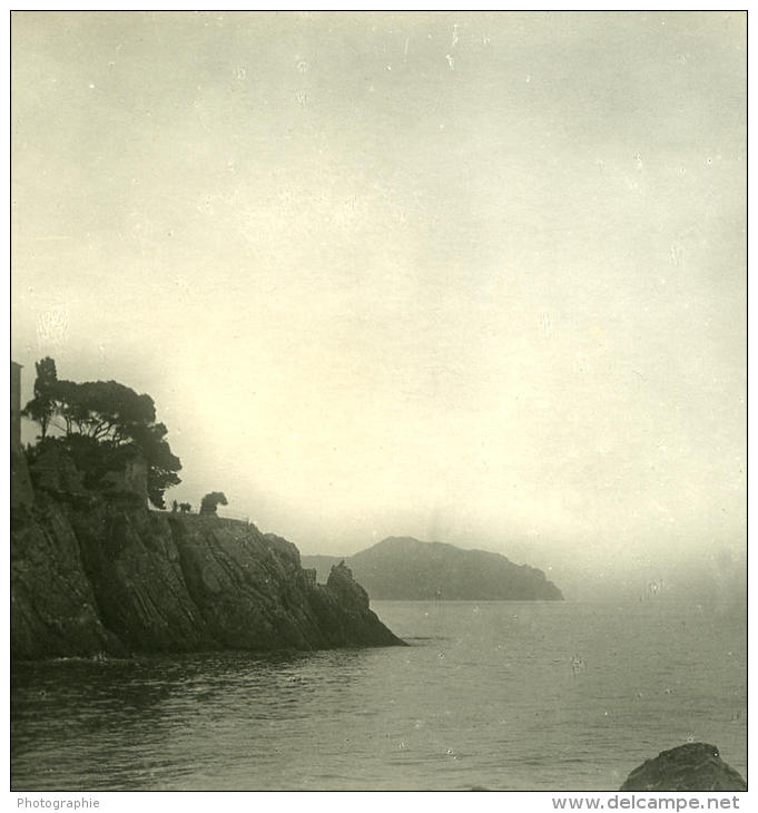 Italie Ligurie Riviera Gênes Nervi Chateau Ancienne NPG Stereo Photo 1900 - Stereoscopic