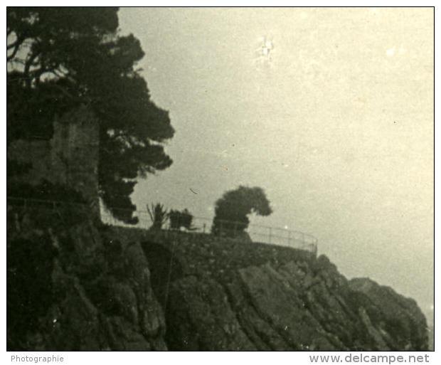 Italie Ligurie Riviera Gênes Nervi Chateau Ancienne NPG Stereo Photo 1900 - Photos Stéréoscopiques