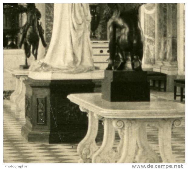 France Chateau De Versailles Grand Trianon Ancienne NPG Stereo Photo 1900 - Stereoscopic