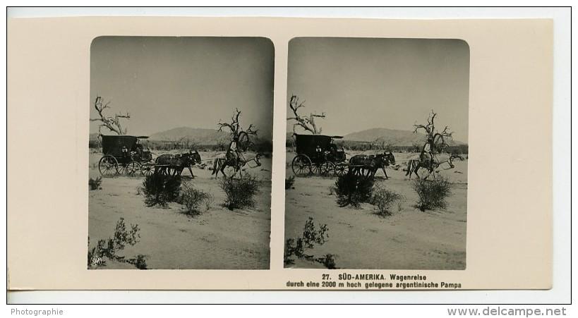 Argentine Diligence Dans La Pampa Ancienne Stereo Photo Stereoscope NPG 1900 - Stereoscopic