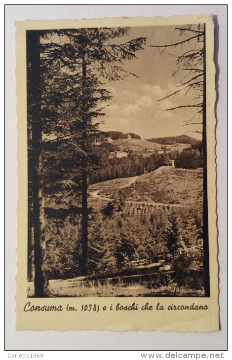 Consuma E I Boschi Che La Circondano Del 1934 Viaggiata F.p. - Firenze