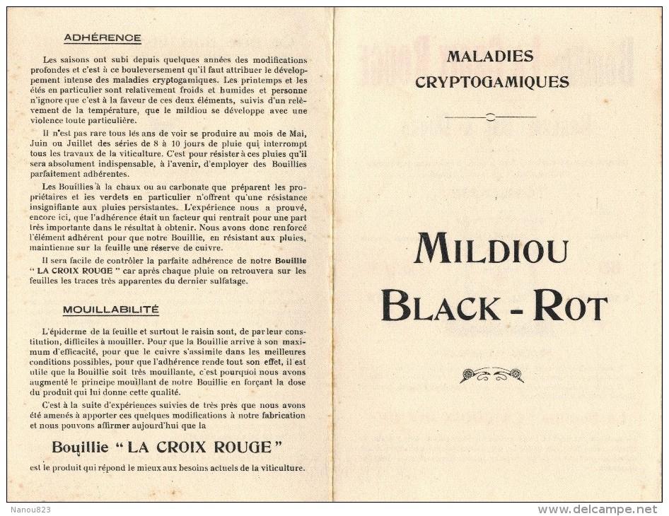 DOUBLE BUVARD Bouillie LA CROIX ROUGE BARLAM BAC & DURAN TOULOUSE Maladies CRYPTOGAMIQUES MILDIOU BLACK ROT - Produits Pharmaceutiques