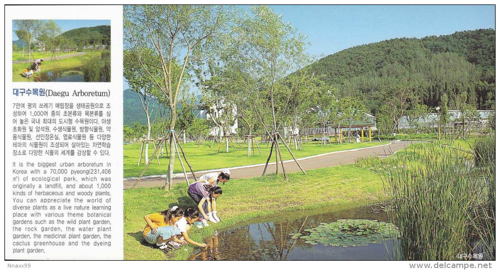 Korea - Daegu Arboretum, Dalseo-gu Of Daegu - Corée Du Sud
