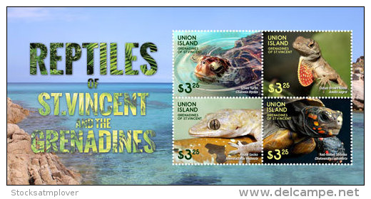 Union Island Grenadines Of St. Vincent-2015-Fauna-Reptiles - St.Vincent E Grenadine