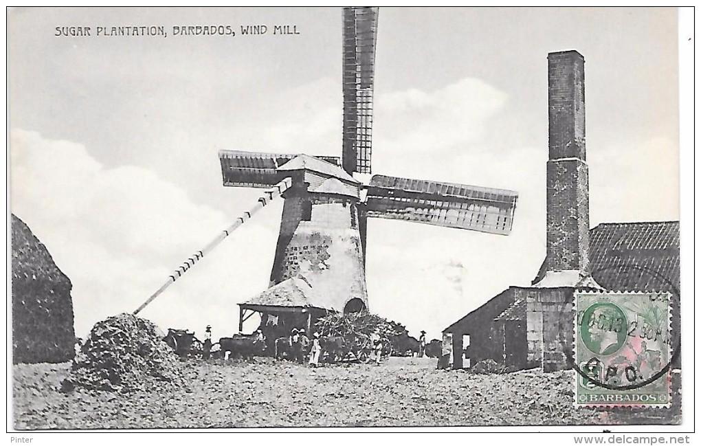 BARBADES - Sugar Plantation - Wind Mill - MOULIN A VENT - Barbades