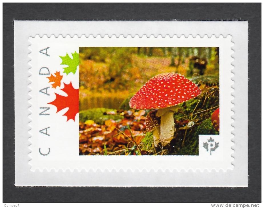 MUSHROOM FLY AGARIC, PILZ, CHAMPIGNON, SETA, FUNGO, Picture Postage Unused Stamp, LIMITED ISSUE Canada 2013 [p3sn] - Mushrooms