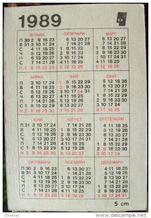 Steam Locomotive G3 - 1989 - Printed In Bulgaria - Calendarios
