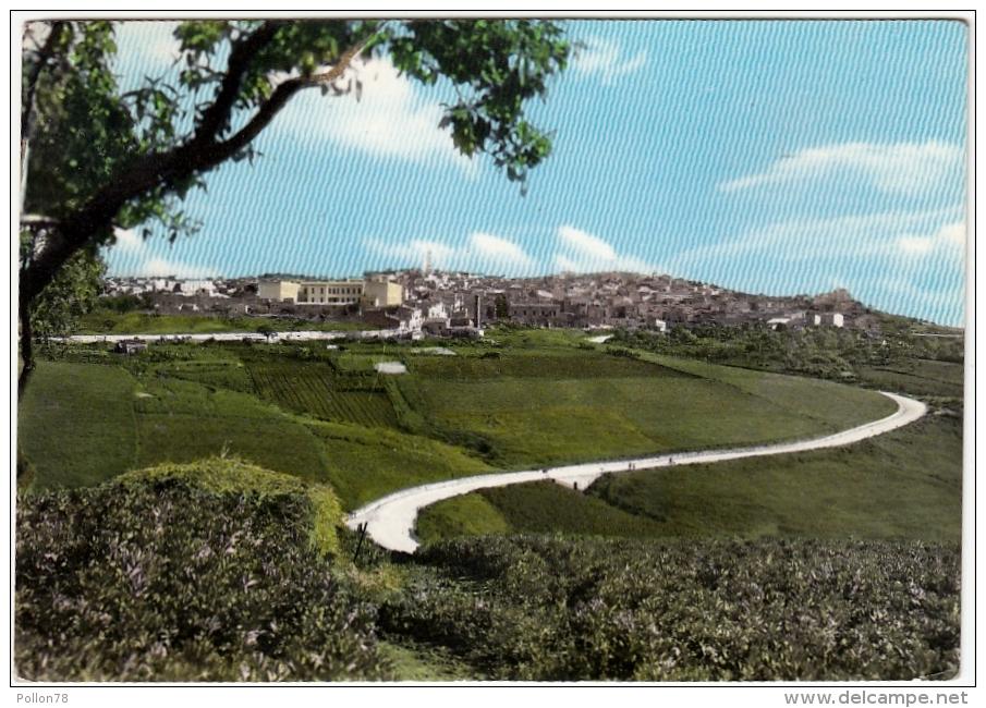 SOMMATINO - PANORAMA - CALTANISSETTA - 1964 - Caltanissetta
