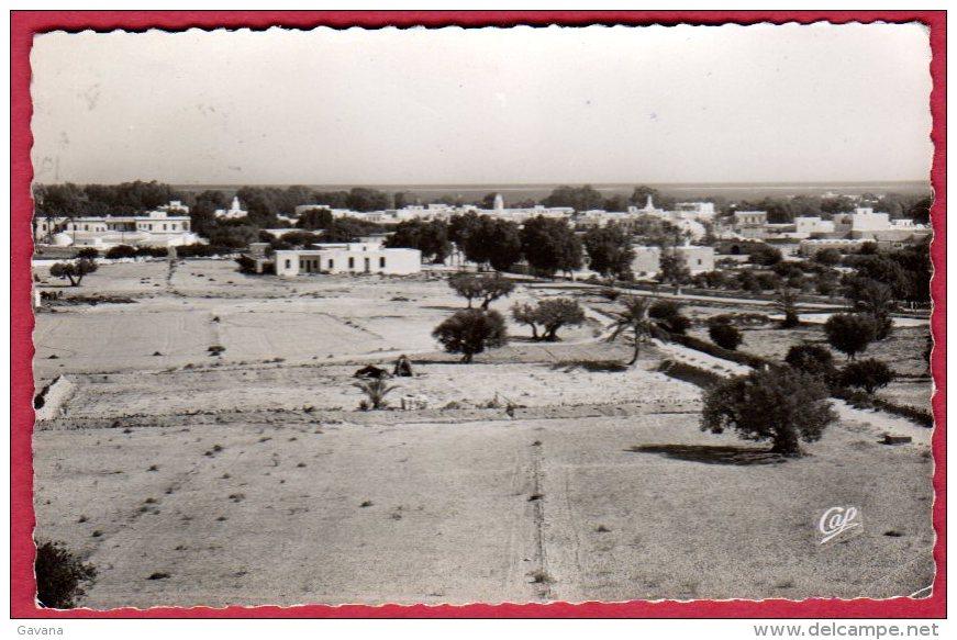 TUNISIE - ILE De DJERBA - Vue Générale D'Houmt-Souk - Tunesië