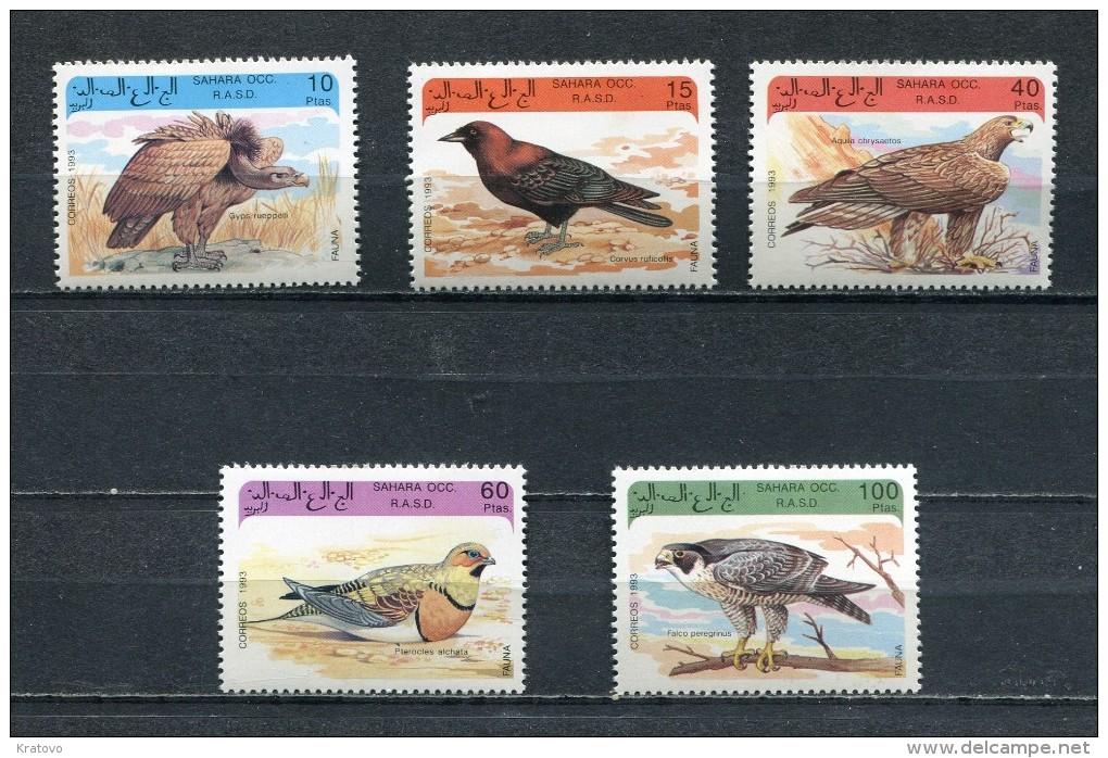 SAHARA OCC 1993 FAUNA BIRDS Set Of 5 MNH - Fantasy Labels