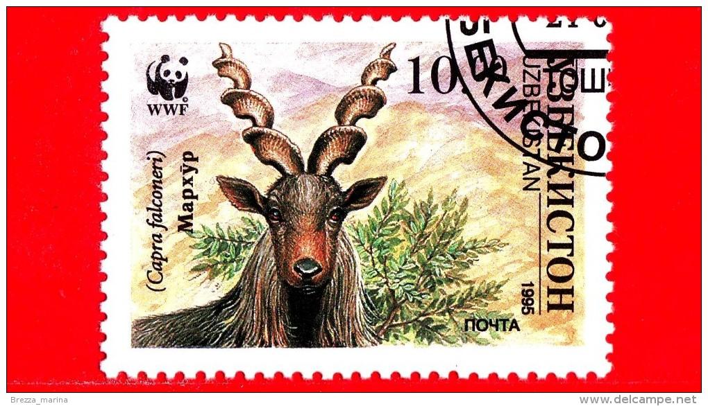 UZBEKISTAN - Nuovo Oblit. - 1995 - WWF - Capra Falconeri - Head Of Makhor - 10 - Uzbekistan