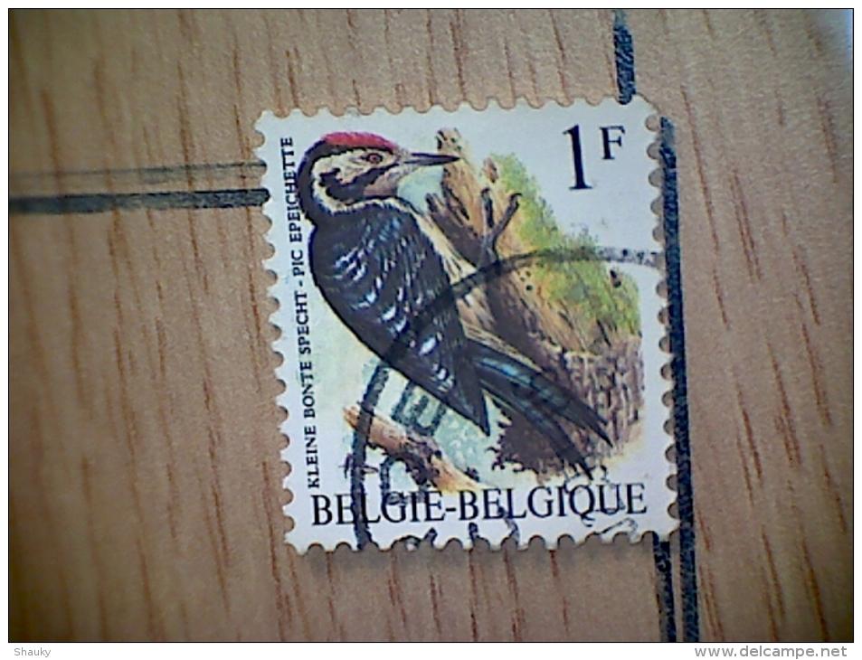 OBP 2349 - Belgique