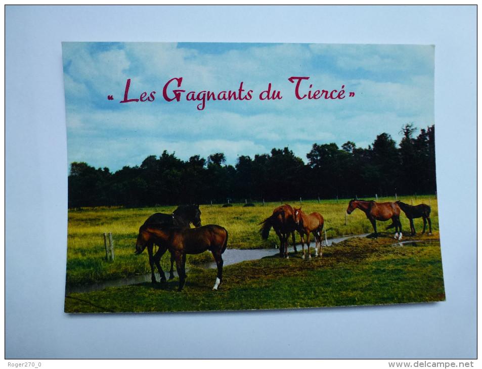 CP , Cheval , Horse - Chevaux