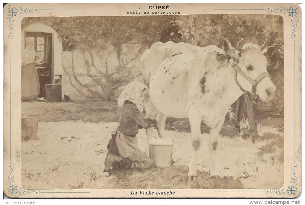 Carte Photo Musée Du Luxembourg, La Vache Blanche, J. Dupré - Autres Collections