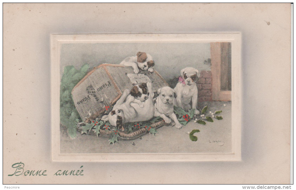 A.STEPHAN  Illustrateur - Quatre  Chiens  Autour  D ' Un  Panier -  Carte  Signée . ( Bonne  Année ) - Ilustradores & Fotógrafos