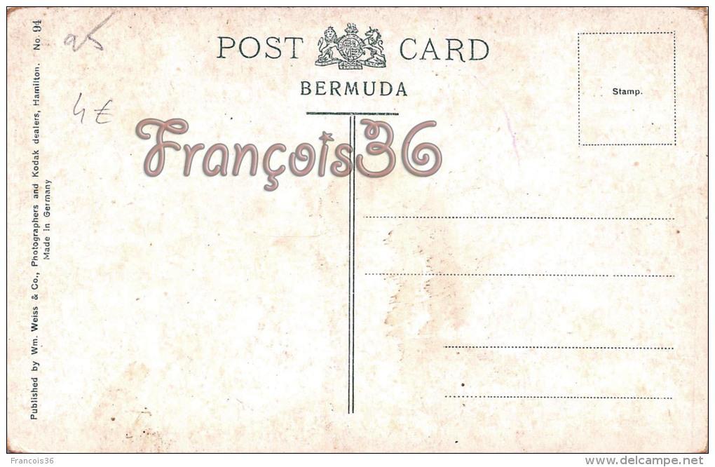 Bermuda Bermudes - Spring Field - 2 SCANS - Bermudes