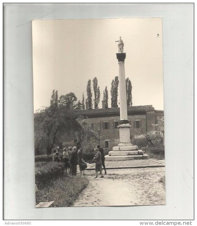 91811 FOTO FOTOGRAFIA ORIGINALE DI SABBIONETA - Orte
