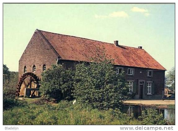 MEEUWEN-GRUITRODE (Limburg) - Molen/moulin - Historische Opname Uit 1955 Van De Gewezen ROOIERMOLEN. Topkaart !! - Meeuwen-Gruitrode
