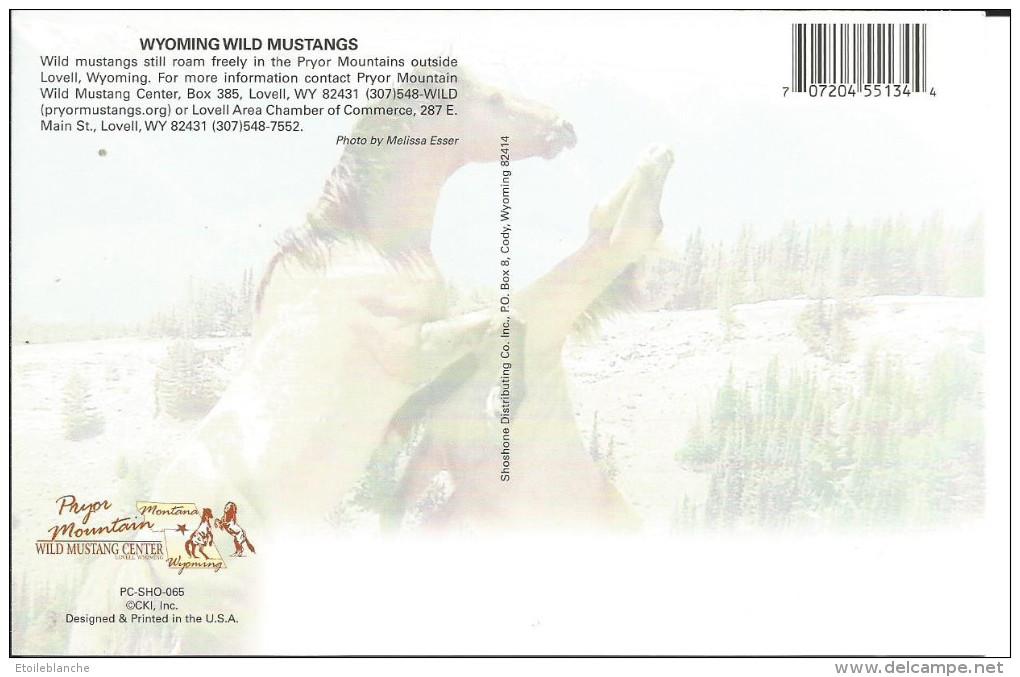 CPM USA Wyoming - Wild Mustangs - Chevaux Sauvages Qui S'affrontent - Etats-Unis